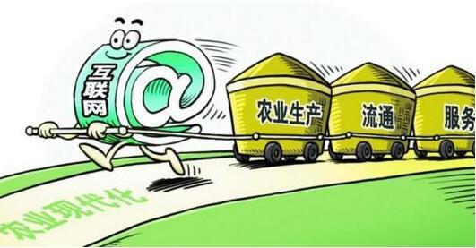 社交电商会成为农村电商的破局利器吗?